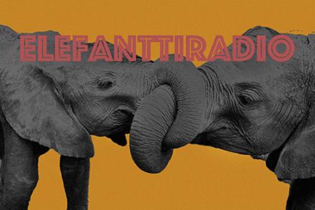 Elefanttiradio